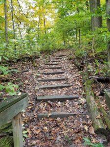 Nature into '19 Hike @ Burnet Woods, Trailside Nature Center